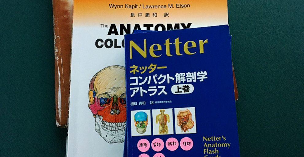バランスポイントを探す/ 解剖学講座 2回目